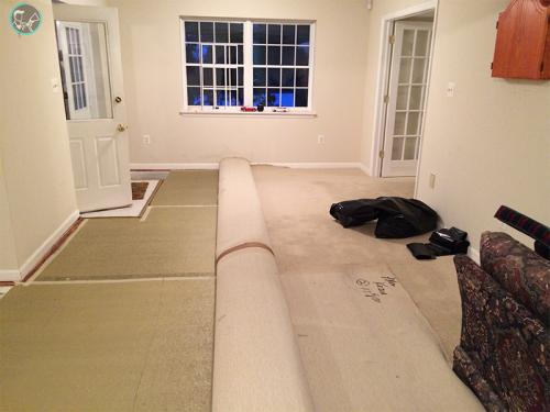 UCM Carpet Cleaning Coral Springs